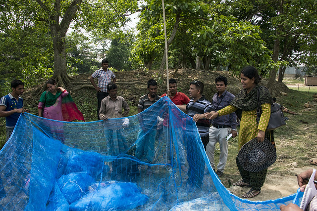 Preparing a cage in Sunamganj, Bangladesh. Photo by Finn Thilsted, 2013.