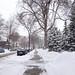 Snowday_3.5.13_C