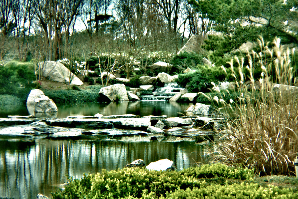 Hermann Park Japanese Garden Hdr With A Holga Lens Flickr