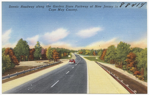 Scenic roadway along the Garden State Parkway in New Jersey in Cape May County | by Boston Public Library
