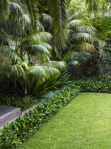 Lawn with mixed planting william for Landscape design jobs new zealand