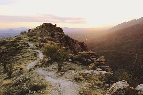 Blackett's ridge. Sabino Canyon, AZ