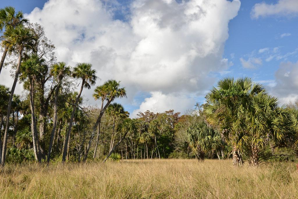 2012Nov17-39 | Riverbend Park, west of Jupiter, FL | PBC Parks and ... Jupiter