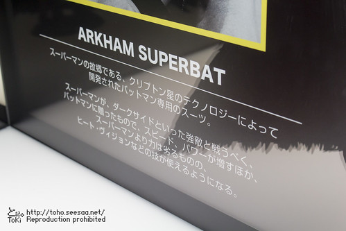 BATMAN100_HotToys_2-694