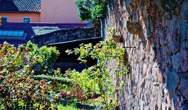 Jardin romain syst me d 39 arrosage aux murs by wis for Jardin romain