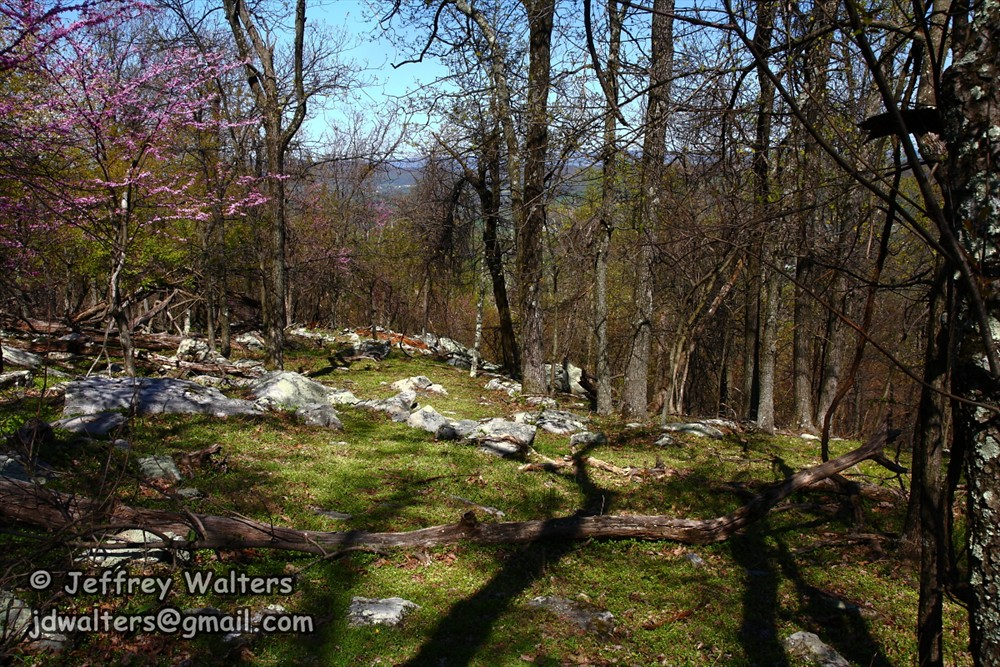 Elk Ridge Heights Homes For Sale