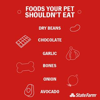 Pet Foods  Gallardon