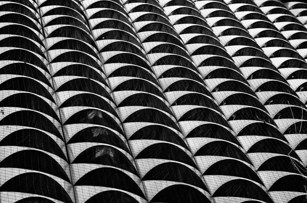 » repetition JRSphotos.com  |Repetition In Photography