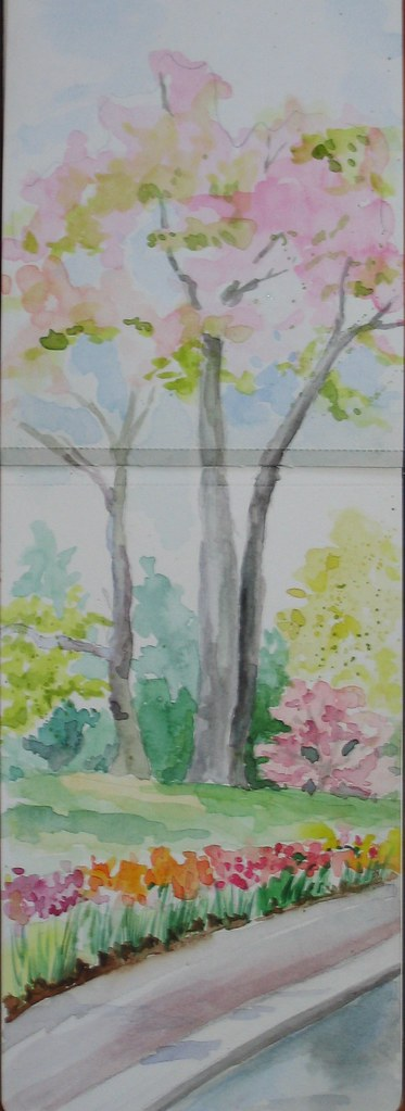 Brooklyn Botanic Garden Graphite And Watercolor In Moleski Flickr