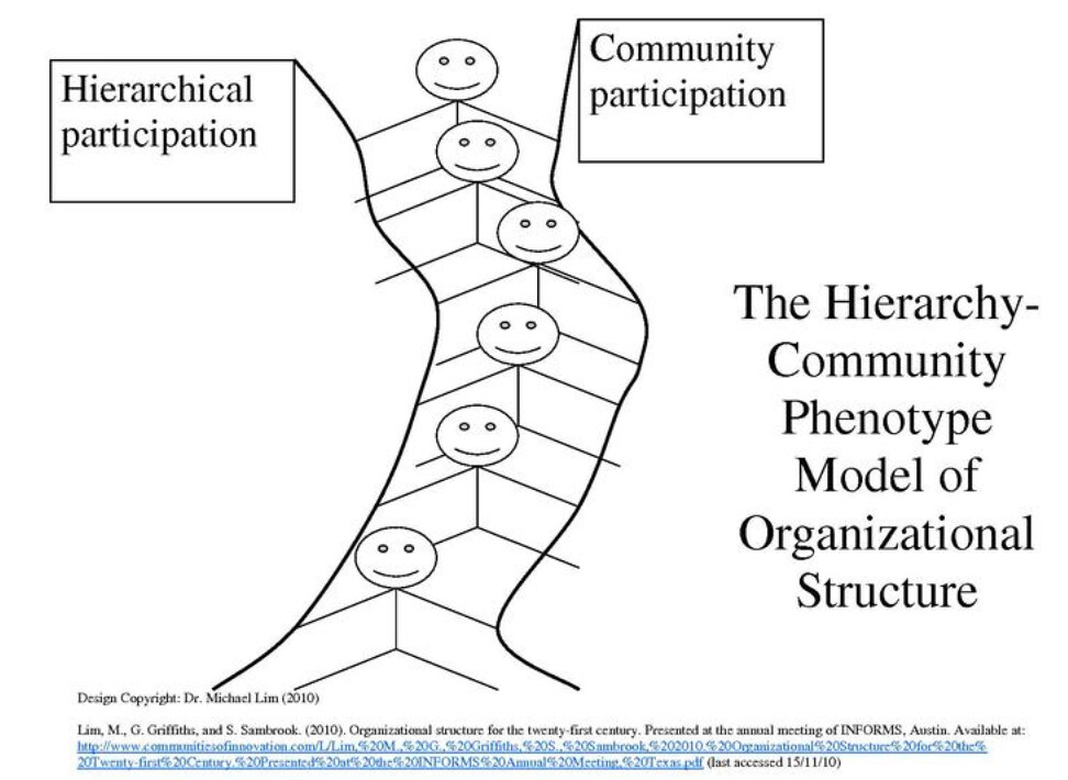 Organizational Chart For Marketing Department: Type of Organization Structures | *Functional Organization Su2026 | Flickr,Chart