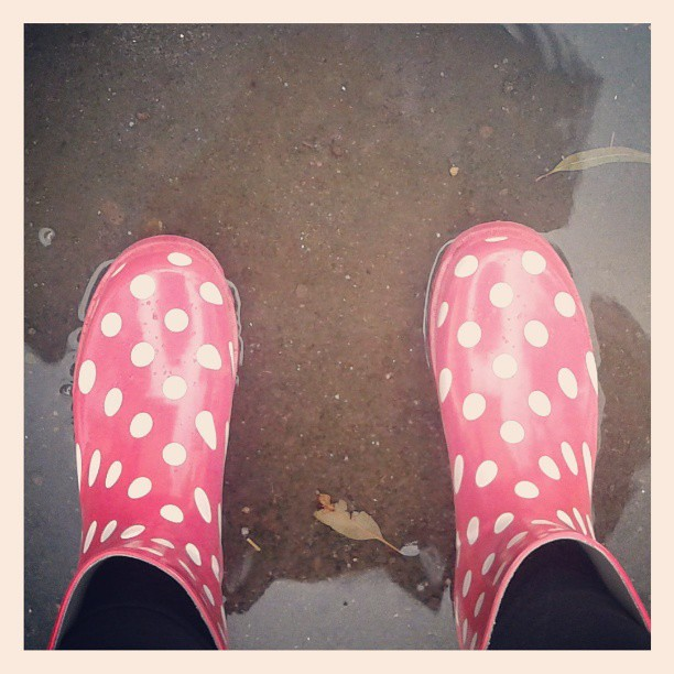 wellies in the #puddles #gumboots #rain #shoes #winter  Flickr