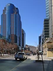 McGill College Avenue