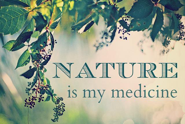 Natural Health Naturopathic Academy Sdn Bhd