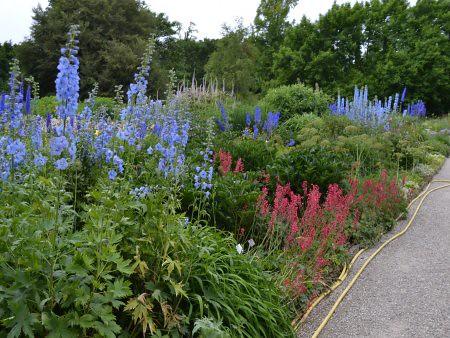 berggarten 5 locuri de vizitat in Hanovra