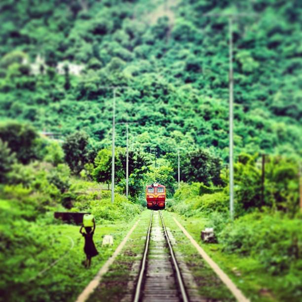 Places To See In Shimla Rajgarh At Shimla: Green #kalka #shimla #railway #indian #monsoon #mountains