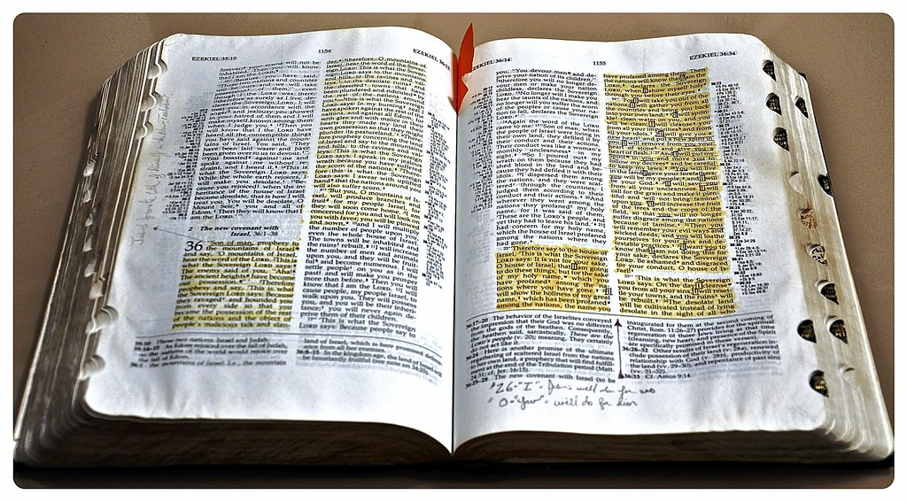 Ryrie Study Bible - Christianbook.com