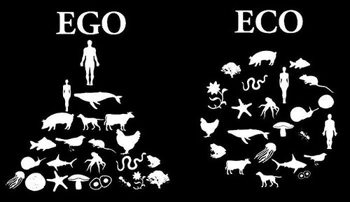 Ego:Eco | by Pendulo2