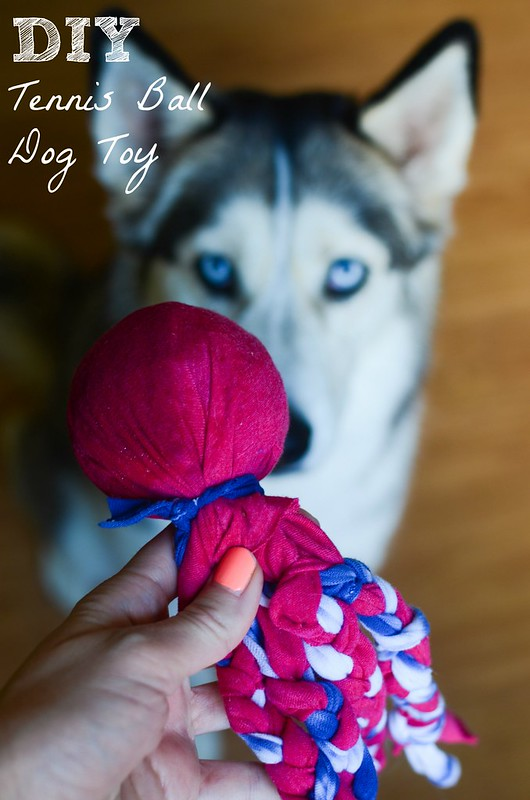 DIY Tennis Ball Dog Toy - keep your dog from destroying all her tennis balls with this easy DIY toy tutorial!