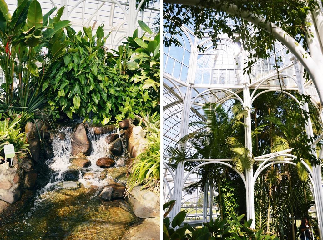 botanico6-horz