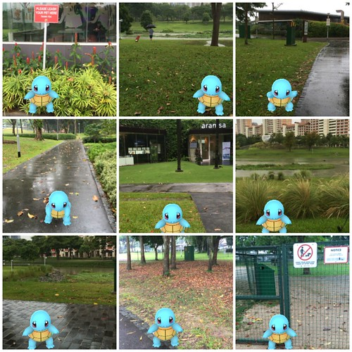 Pokemon Trainer tour of Singapore: Squirtle at Ang Mo Kio - Bishan Park East
