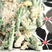 green bean anchovy salad 4