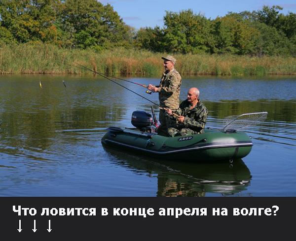 рыбалка на волыни где клюет