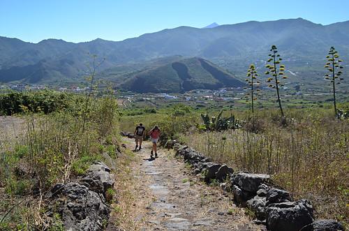 Summer walking in Teno, Tenerife