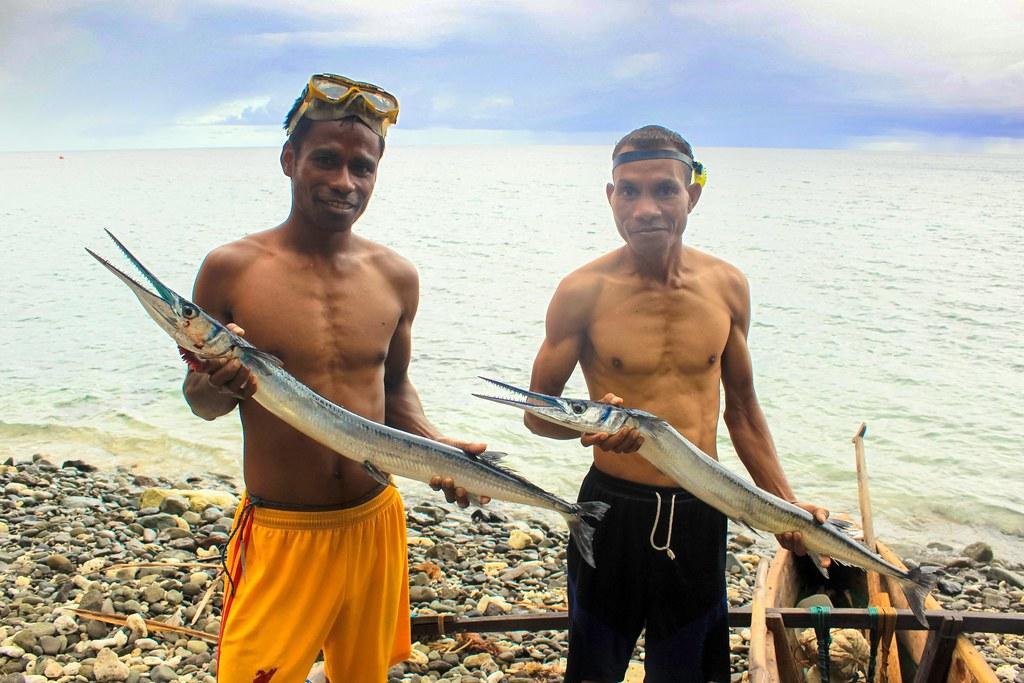 Long tom fish, Adara village, Timor-Leste. Alex Tilley, 20 ... Fish