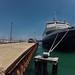 Abegweit ~ Columbia Yacht Club