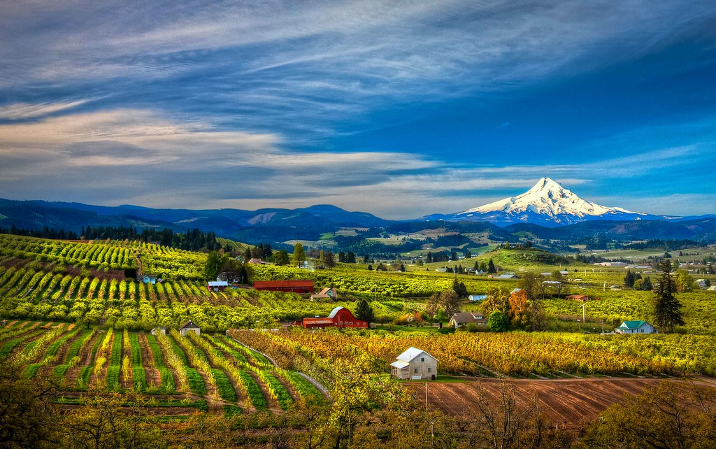 Pear Orchards In Hood River Oregon Www
