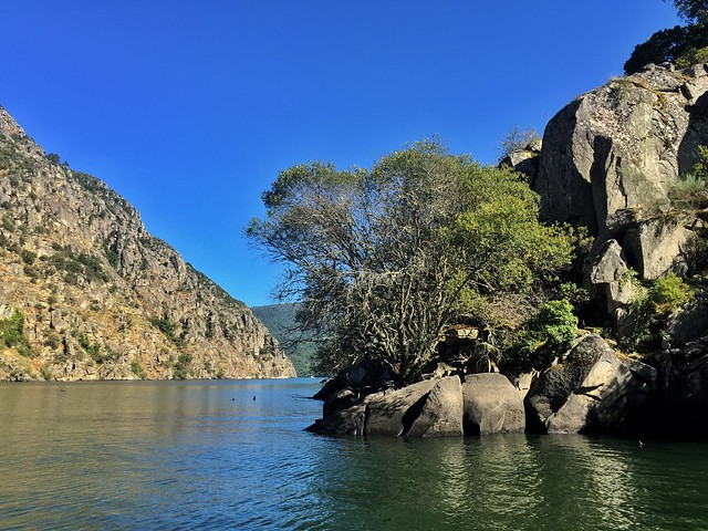 Cañón del Sil a vista de barco (Ribeira Sacra, Galicia)