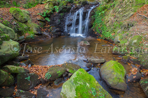 Parque Natural de #Gorbeia #DePaseoConLarri #Flickr      -1476