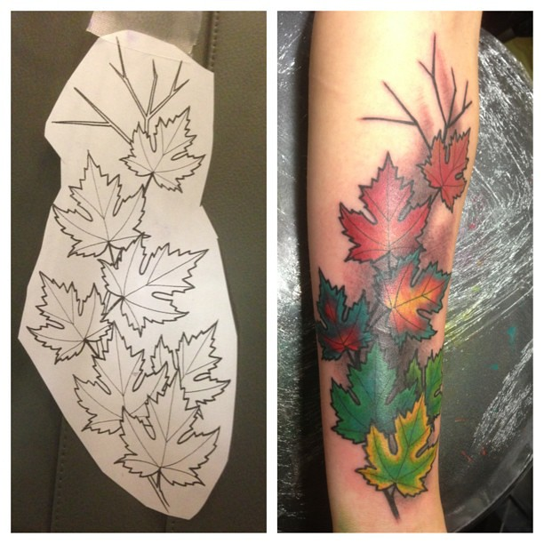 #picstitch #maple #leaves #seasons #change #spring #summer ...