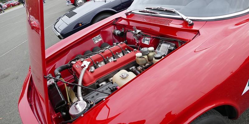 """Alfa Bertone 1750/S2 """"Track-Day"""" de Guillaume C. 30122486811_400f480e26_c"""