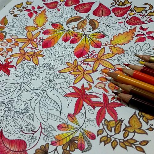 Beeem Devagarzinho Mas Avanando Coloringbook Jardi