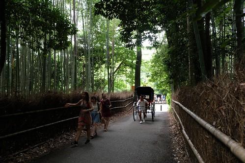 竹林の小径を行き交う人々を眺めながら写真を撮る