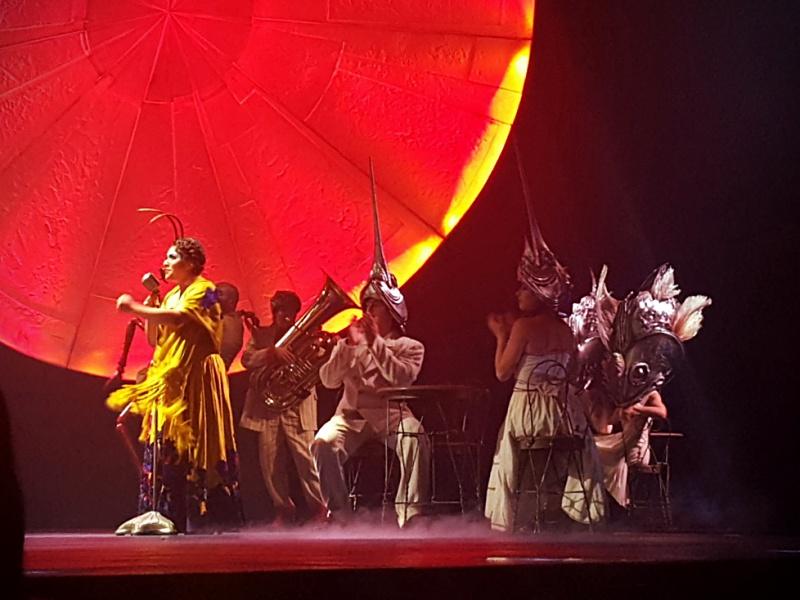 Cirque du Soleil Luzia costumes