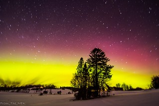 Aurora_WhitePine2 | by Tim_NEK