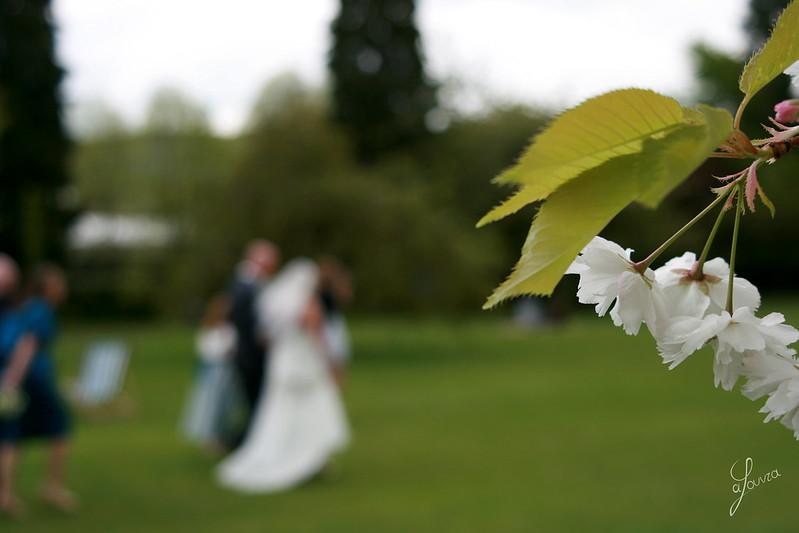 British Wedding, Bath, UK
