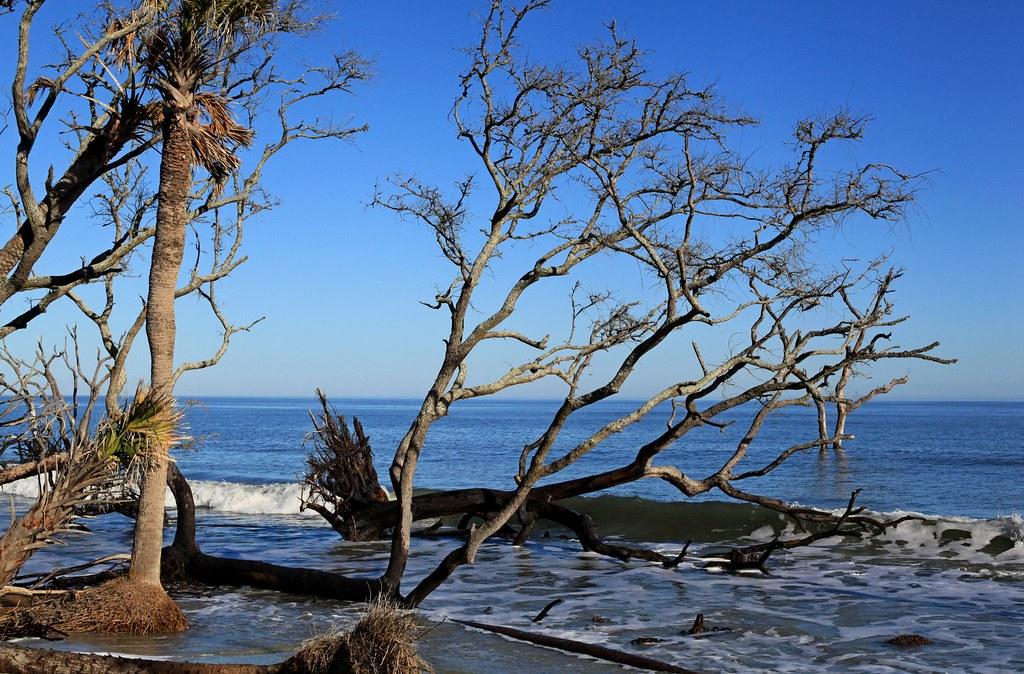 Island Beach State Park After Sandy