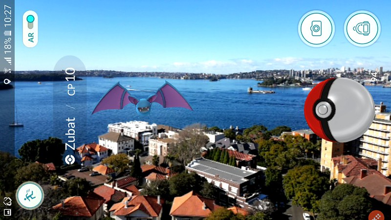 Zubat over Sydney Harbour