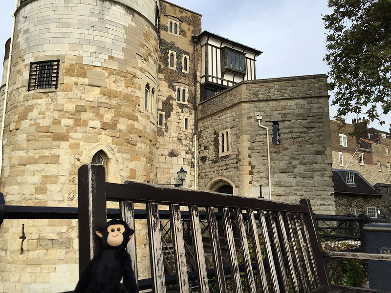 Monkey at the Tower