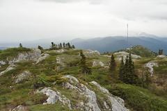 Grey Mountain Telegraph Towers