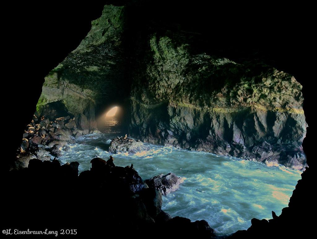 Sea Lion Caves. Cape Perpetua, Oregon. | Sea Lion Caves ...