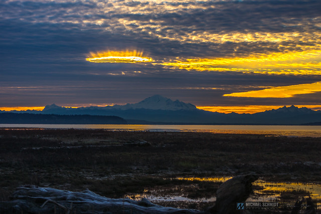 2015-02-22 Ladner Boundary Bay Sunrise -14