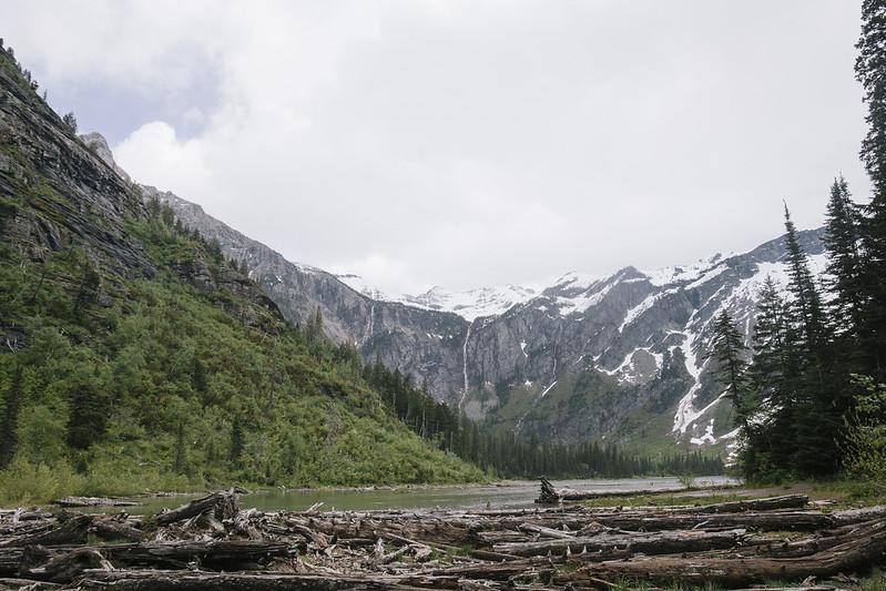 Montana_May16_037
