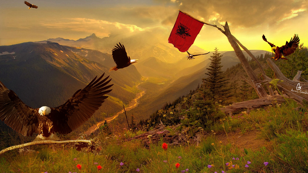 Eagle home | home of Eagle is Albania BY arnis gashi Canon 5… | Flickr