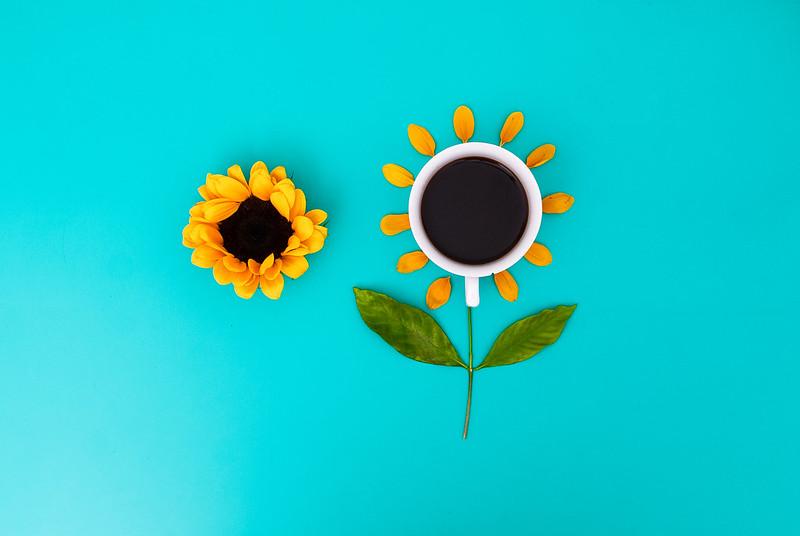 ♥ Café e Sol