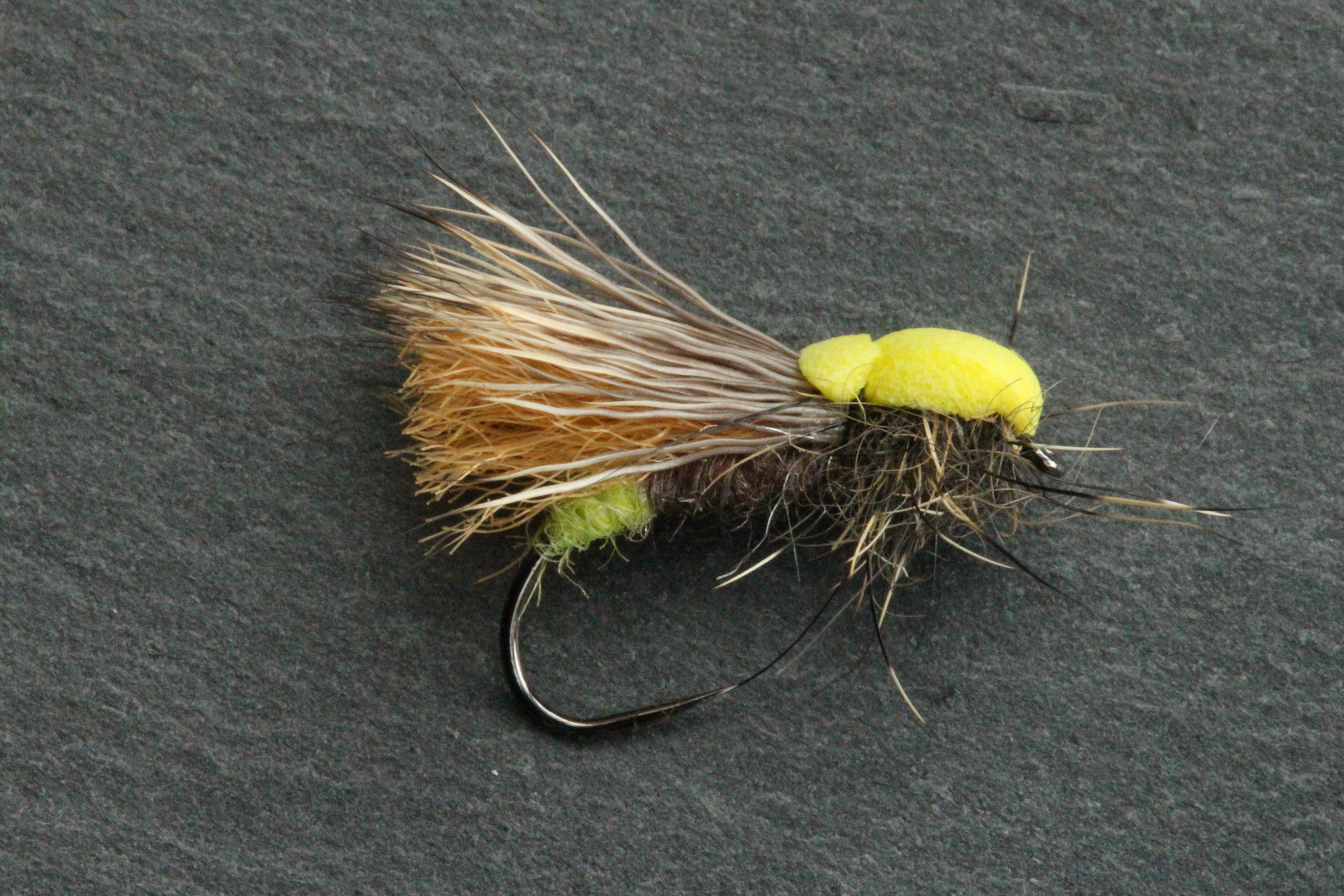 Balloon caddis varant