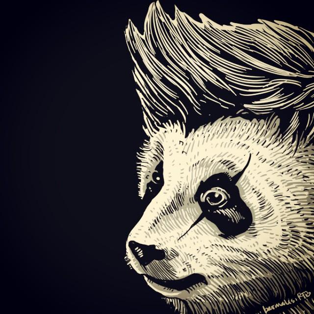 Funky Panda Art Cool